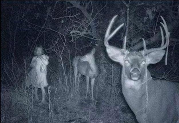 foto-estranha-tirada-na-floresta-a-noite-123123