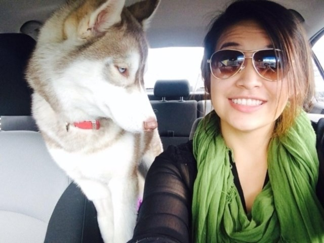selfies-animais