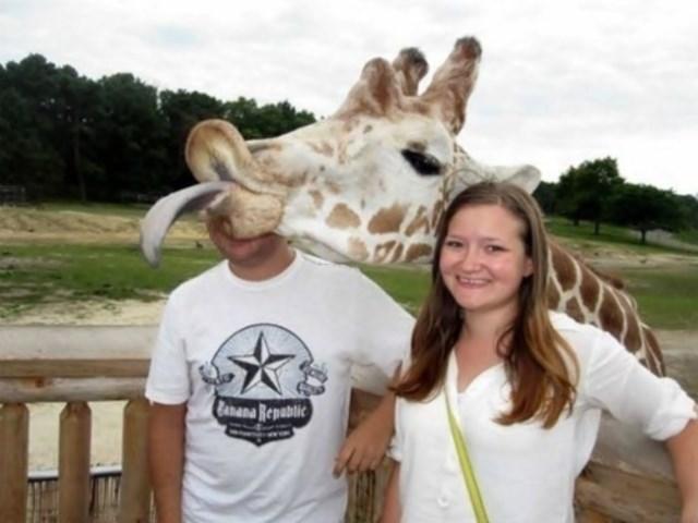 selfies-animais10
