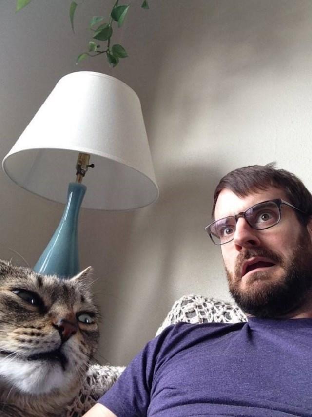 selfies-animais14