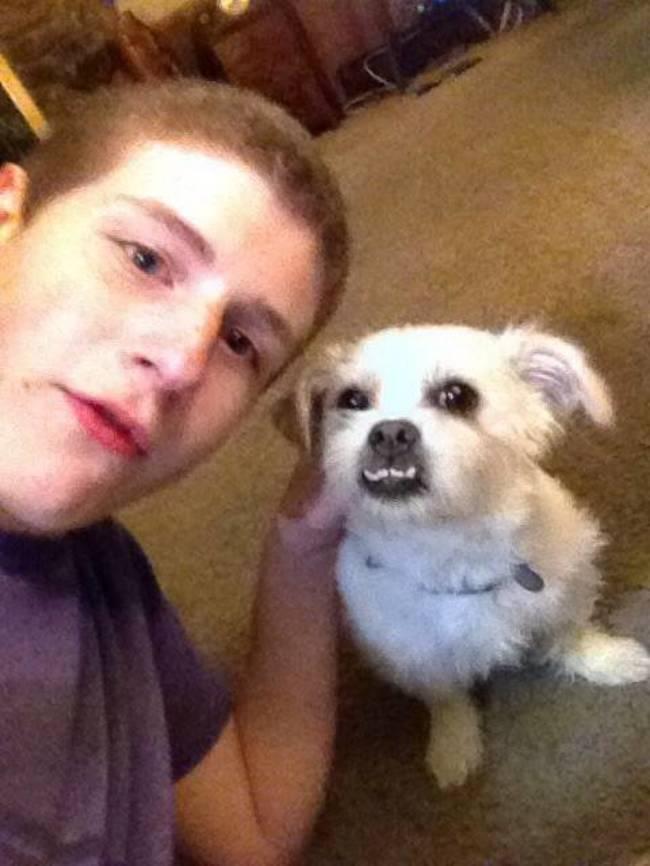 selfies-animais16