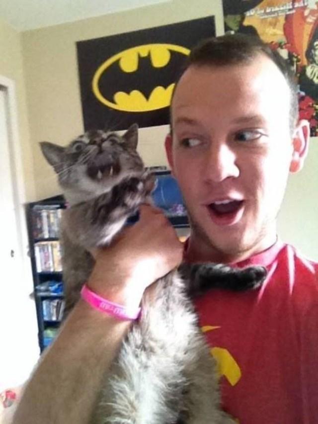 selfies-animais4