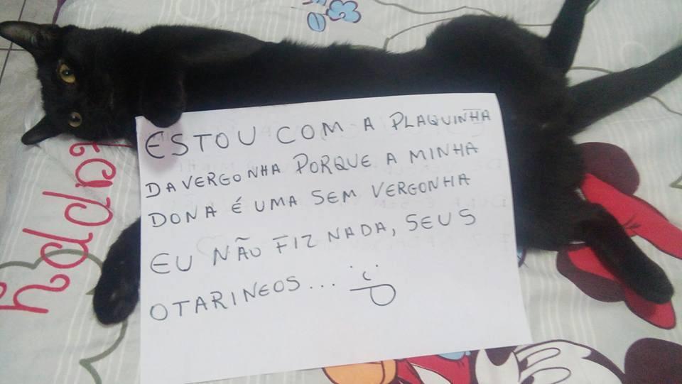 plaquinha-da-vergonha4